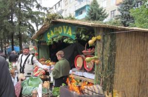 Село Садова