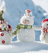 Декабрь зиму начинает